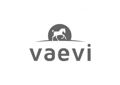 Vaevi